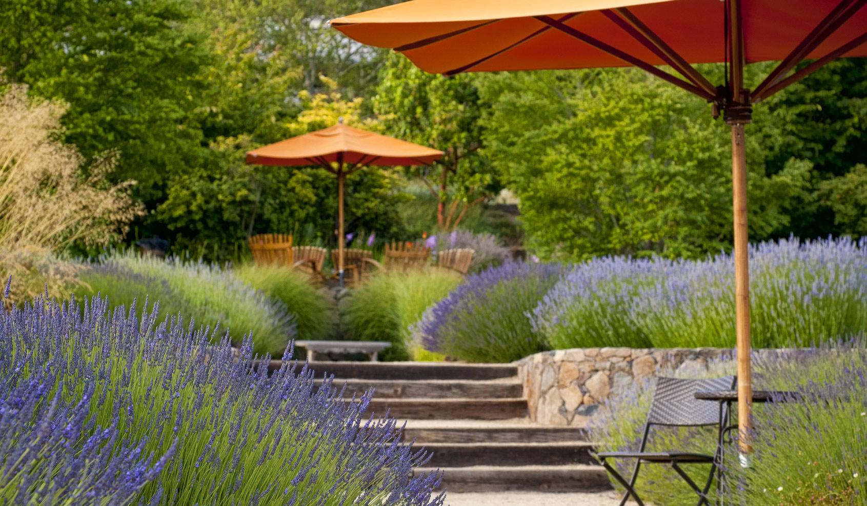 Au Jardin Provencal Jardinier Paysagiste Le Beausset